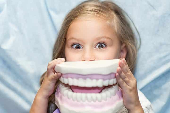kindergebit naar volwassen gebit